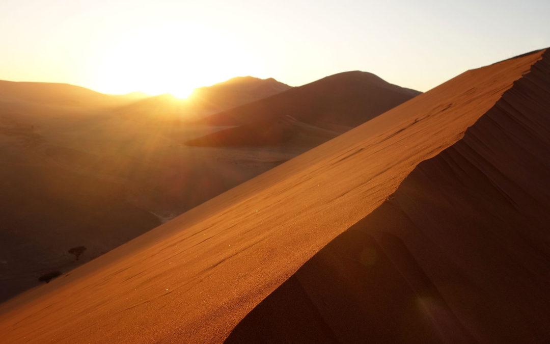 Weite Landschaft – mystische Dünen